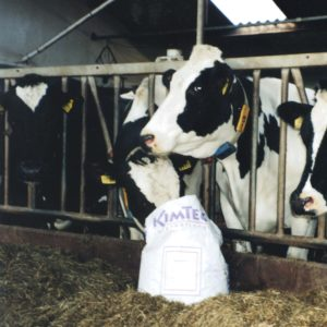 Need help with bovine ketosis? Use Proglyc to prevent subclinical ketosis in dairy cows and fatty liver cow problems.
